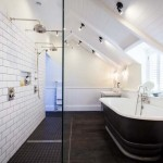 Bathroom Ceiling Paint Ideas 2017